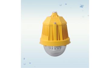 免维护防爆灯DFC-8765A